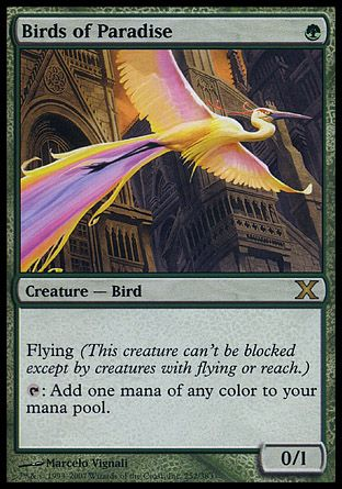 Birds of Paradise, 10th Edition