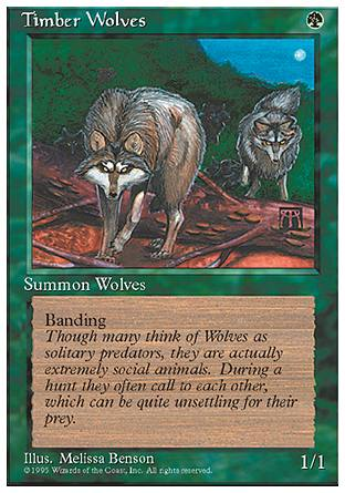 Timber Wolves, 4th Edition