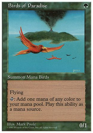 Birds of Paradise, 5th Edition