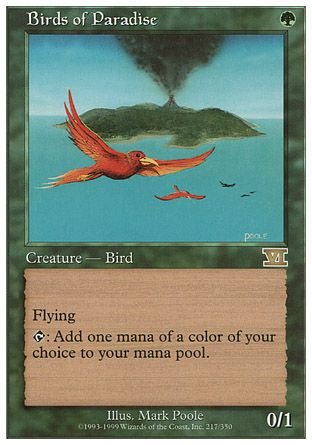 Birds of Paradise, 6th Edition