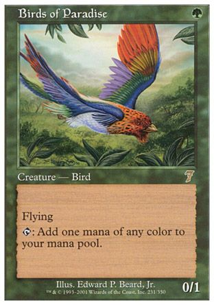 Birds of Paradise, 7th Edition