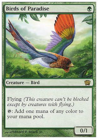Birds of Paradise, 8th Edition