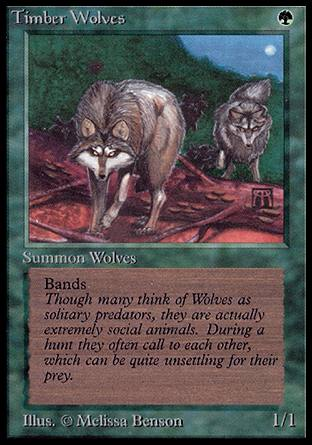Timber Wolves, Alpha