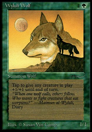 Wyluli Wolf, Arabian Nights