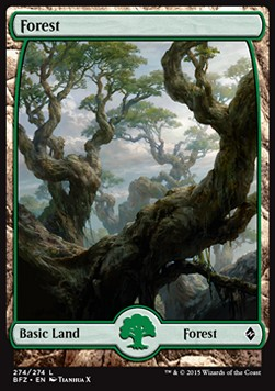 Forest, Battle for Zendikar