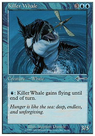 Killer Whale, Beatdown