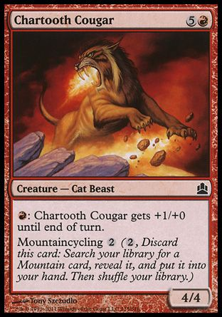 Chartooth Cougar, Commander