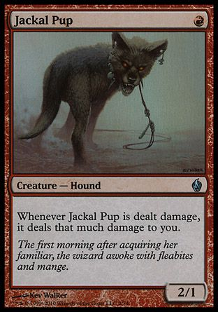 Jackal Pup, Fire and Lightning