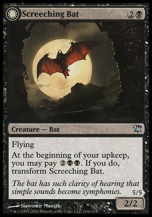 Screeching Bat