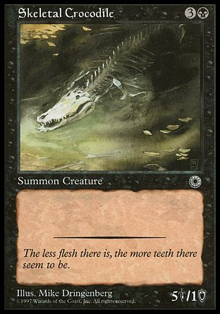 Skeletal Crocodile, Portal