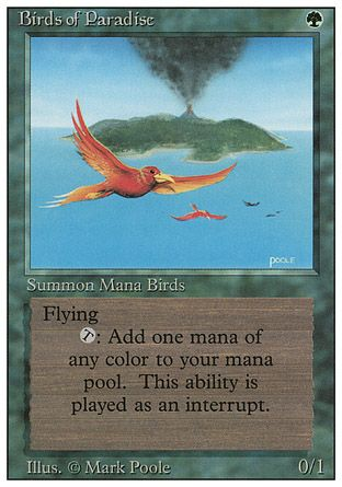 Birds of Paradise, Revised