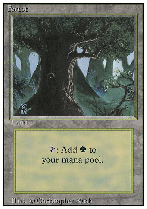 Forest, Revised