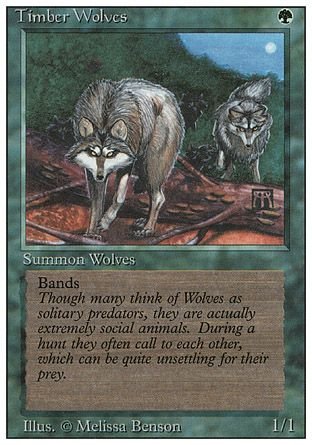 Timber Wolves, Revised