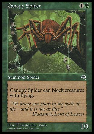 Canopy Spider, Tempest